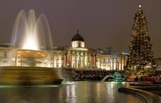 The Trafalgar Square Christmas Tree Tradition