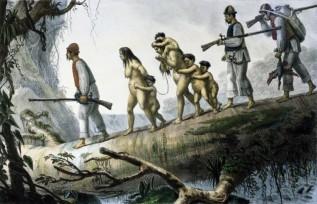 South-American-Slave-Trade-317x204.jpg